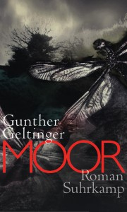 Gunther Geltinger: Moor