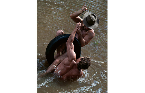 Copyright: Paul Freeman