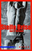 Jan R. Holland: Steife Brise
