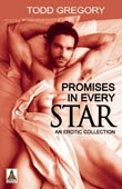 Todd Gregory: Promises in Every Star